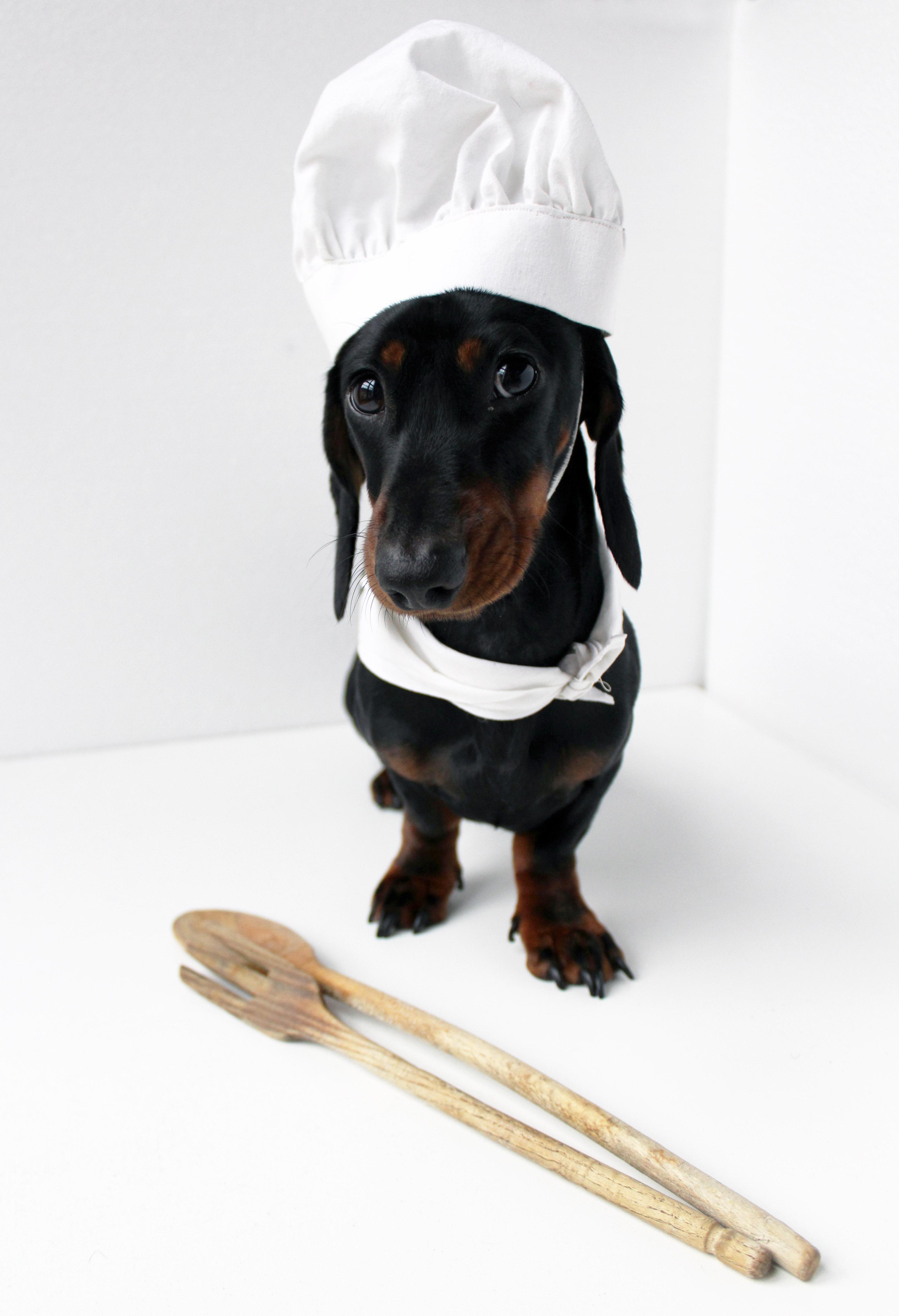 Chef Napoleone